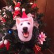 今年のクリスマス