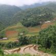 ベトナム 少数民族の村・カットカット村 3