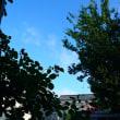 爽やかに晴れ渡る空の朝