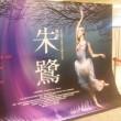 舞劇「朱鷺(とき)」を見て来ました。
