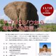 11月18日(土):福岡での講演会