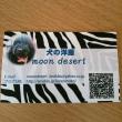 江戸川区 篠崎公園そば カフェ ハン  11月18日(日)室内販売 moon desert 犬の洋服