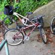 プレバト自転車俳句