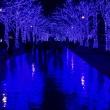 渋谷 青の洞窟 2017