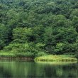 中丿沢温泉の姫沼