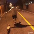 イ・ジョンソク インスタ更新 「夜のお散歩」