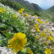7月22日 乗鞍岳3,026m その2