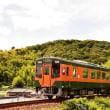遠州を湘南電車が走る