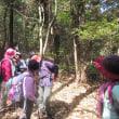 6 金甲山・怒塚山(403・332m:岡山市・玉野市)登山(続き)  登山路に三角点が
