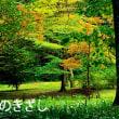神代植物公園&水生植物園の小さな秋