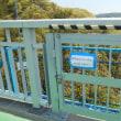 新緑の竜神大吊橋へ
