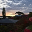 つつじが岡公園の夜明け風景