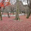 冬景色・東福寺