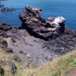 初めての済州島