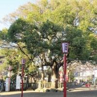 湘南ひらつか七福神巡り(神奈川・平塚)