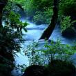 3954 神秘の園