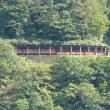 宇奈月トロッコ電車(眺めるだけの巻)