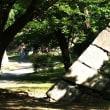 福岡城址 私の散歩道