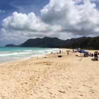ハワイ旅行、海にのために行く。