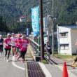 2014越後湯沢秋桜(コスモス)ハーフマラソン☆申し込み締め切り間近です!