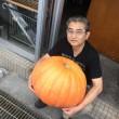 9月20日 今日は水曜日でお休み、ハロウィン用のカボチャを買いに土佐市まで(´∀`)