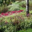 よこはま里山ガーデン