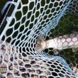 12月14日 Fish On王禅寺