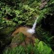 超広角10ミリレンズで撮った黒山三滝(埼玉県越生町)