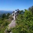 鋸山登山会
