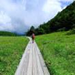 水ノ塔山・東篭ノ登山・池の平湿原
