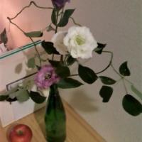 白と紫のトルコキキョウ