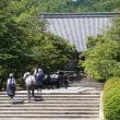 24日の散歩 ( 仁和寺往復で、仁和寺と平野神社からの夏だより )