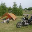 内山牧場キャンプ場でスローライフ