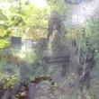 ■ クスミエリカ個展 変転のコリドー (2017年9月14日~27日、札幌) 9月23日は9カ所(3)