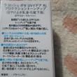 UVイデア XL プロテクショントーンアップ~♪