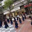 『AZUKI』横浜良いよさこい祭り~良い世さ来い 2018