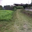 置場の草刈り