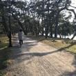 城崎温泉と天橋立の旅…2日目!