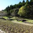 快晴の七井戸公園