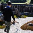 岡山県 吉備中央町でポタリングしながら重森三玲さんの作品に浸る〜
