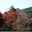 筑波山ロープウエイと紅葉