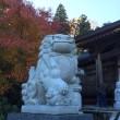 永源寺のモミジ