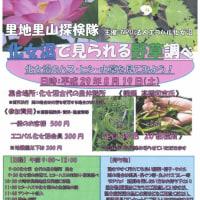 里地里山探検隊「化女沼で見られる野草しらべ」参加者募集のお知らせ