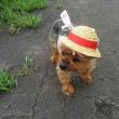 麦わら帽子被って公園へ
