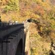 秋の軽井沢旅行  その2