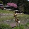 峰寺のミトマツリ