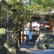 Shizuoka / Shizuoka Trip (静岡旅行)