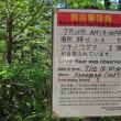神が降りる地 上高地 自然研究路 8
