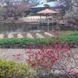4/28 (土) 馬場花木園春まつり2018