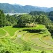 四国の棚田と山岳集落(高知県・香美市「有瀬の棚田」)